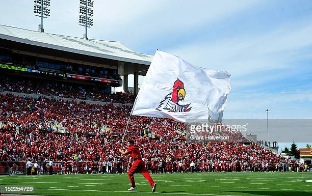 Louisville Cardinals cheerleader celebrates after a touchdown during a game against the North Carolina Tar Heels at Papa John's Cardinal Stadium on...