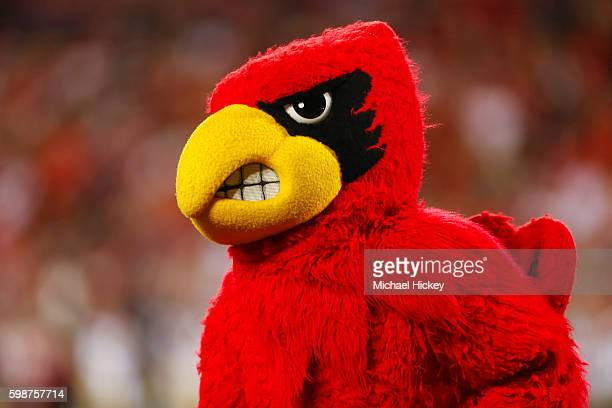 Louisville Cardinals mascot Louis is seen during the game against the Charlotte 49ers at Papa John's Cardinal Stadium on September 1 2016 in...