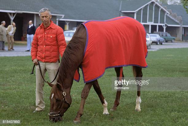 Kentucky Derby favorite Alydar of Calumet Farms munches blue grass under the watchful eye of exercise rider Charlie Rose 4/30