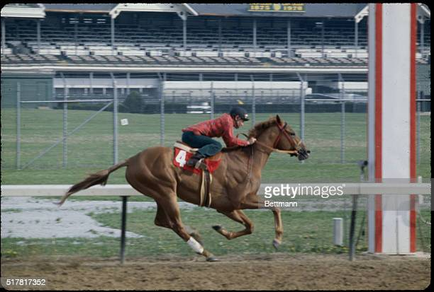 The Kentucky Derby to be held 5/13 has started to take on the dimension of a grudge match between first favorite Alydar and second favorite Affirmed...