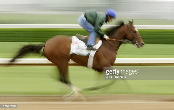 Jockey Alex Solis rides likely favorite Brother Derek 01 May 2006 during his morning workout for the 132nd running of the Kentucky Derby at Churchill...