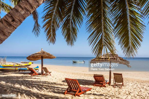 loungers on the beach - chaise longue stock photos and pictures