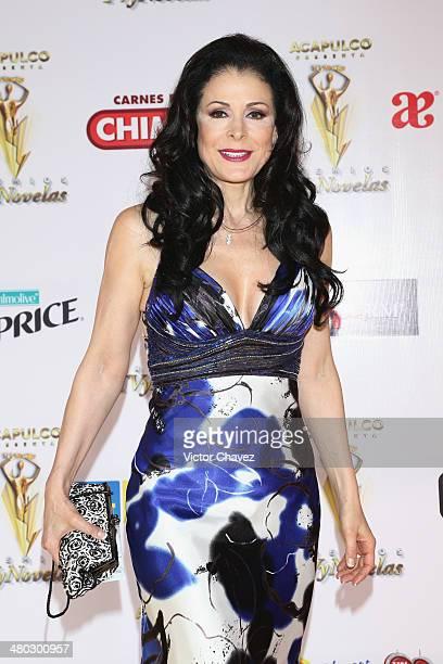 Lourdes Munguía attends the Premios Tv y Novelas 2014 at Televisa Santa Fe on March 23 2014 in Mexico City Mexico