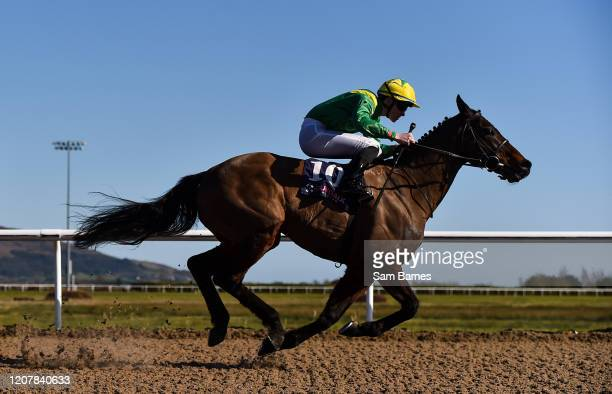 Louth Ireland 20 March 2020 Stamp of Authority with Luke McAteer up during the Crowne Plaza Dundalk Race Stay Claiming Race at Dundalk Racecourse in...