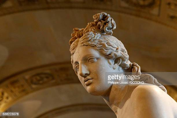 Louvre Museum. Paris. Aphrodite of the type known as 'Capitol'. Second century AD. Marble. Detail.