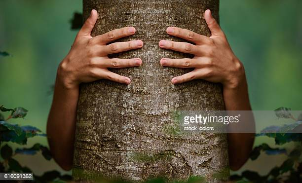 love and protect the environment - tree hugging stock pictures, royalty-free photos & images