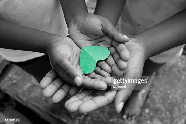 El amor y el cariño; joven manos cradling corazón