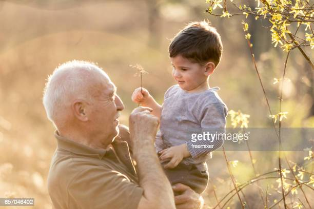 Love betweeen grandchild and grandfather