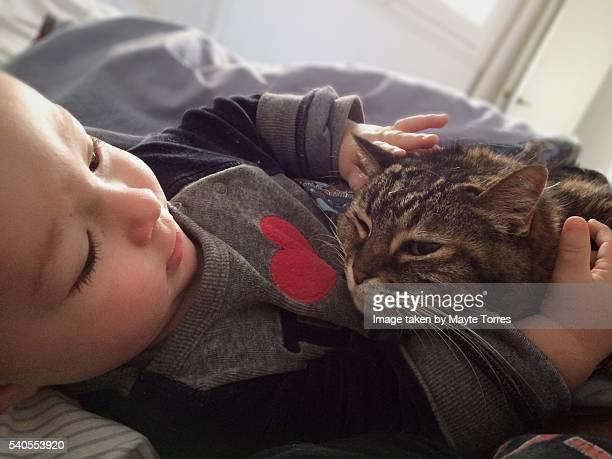 Love between cat and baby