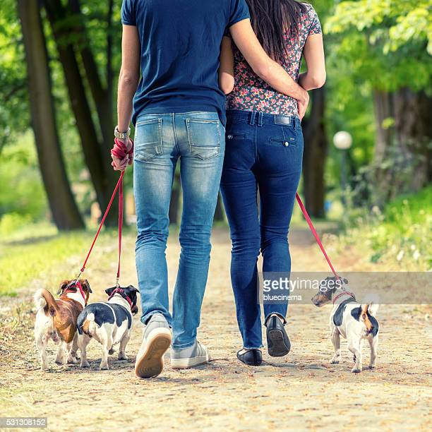 love couple with their dogs in the park - male maldives stock pictures, royalty-free photos & images