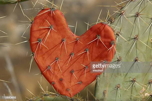 love hurts - toxin stock pictures, royalty-free photos & images