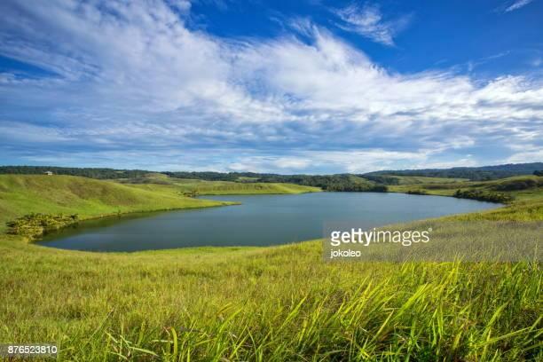 love lake sentani (danau love) - pond stock pictures, royalty-free photos & images
