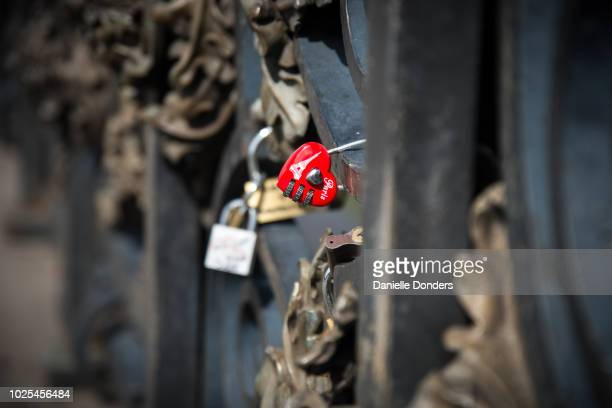 Love locks on Pont Neuf in Paris, France