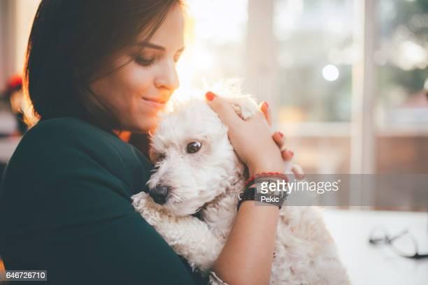 adoro meu cachorro soo muito! - poodle - fotografias e filmes do acervo