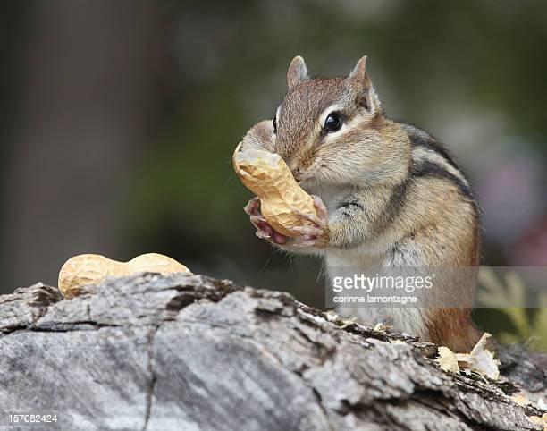 I love my peanuts :)