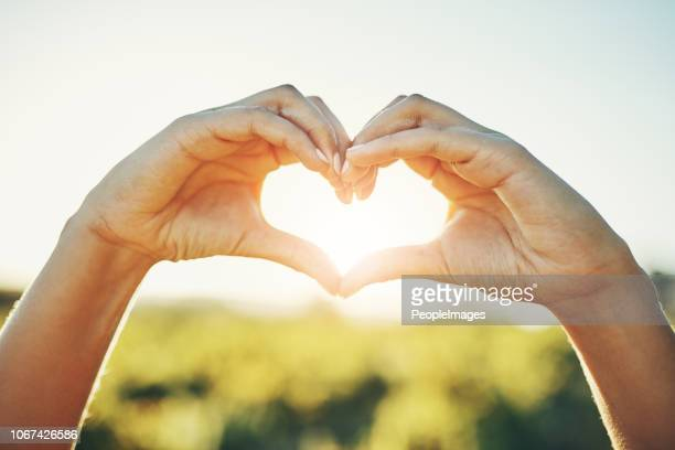 i love nature - heart shape stock pictures, royalty-free photos & images