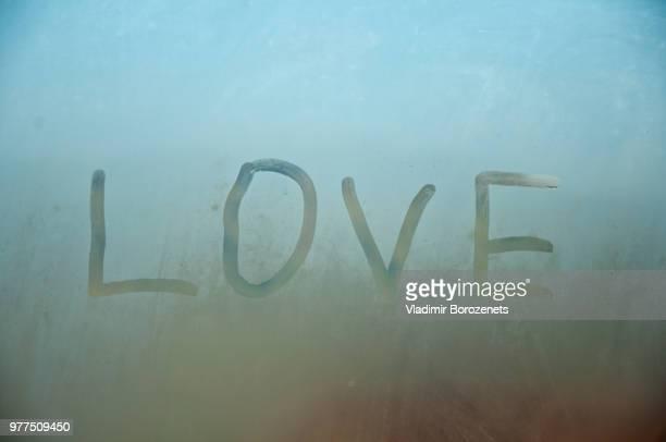 love on the window - ascaris photos et images de collection