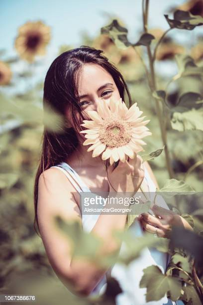 i love the smell of sunflowers - innocence stock pictures, royalty-free photos & images