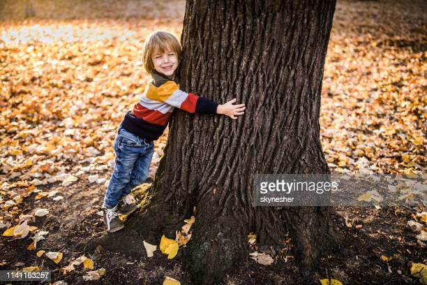 i love trees, don't cut them! - tree hugging stock pictures, royalty-free photos & images
