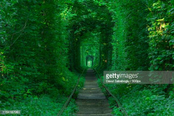 love tunnel - ウクライナ ストックフォトと画像
