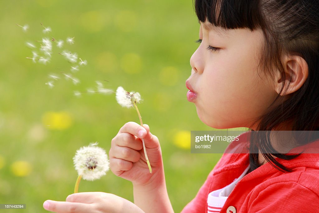 lovely asian girl : Stock Photo