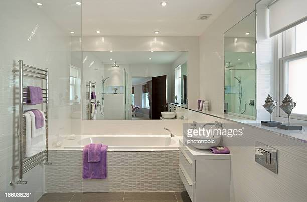 lovely guest's bathroom