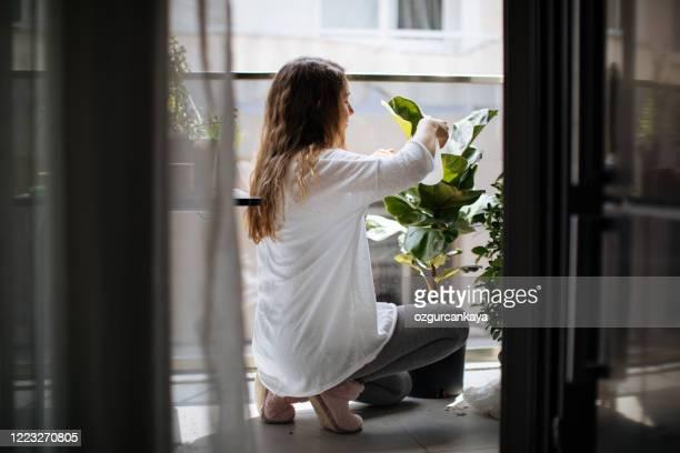 adorável dona de casa com flor em pote e conjunto de jardinagem - sacada - fotografias e filmes do acervo