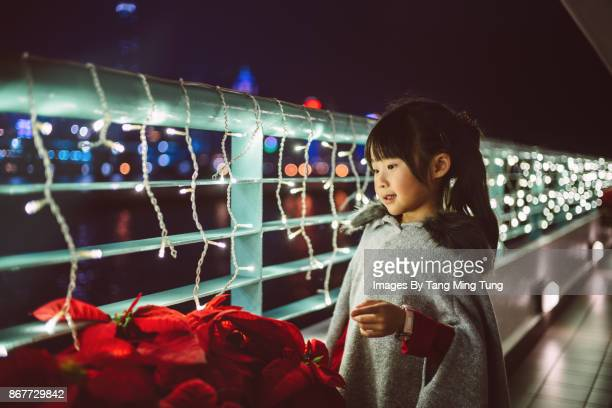 Lovely little girl looking at Christmas flowers happily.