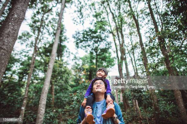 lovely little girl riding joyfully on her young daddy's shoulder while they are hiking in forest - paisajes de hongkong fotografías e imágenes de stock