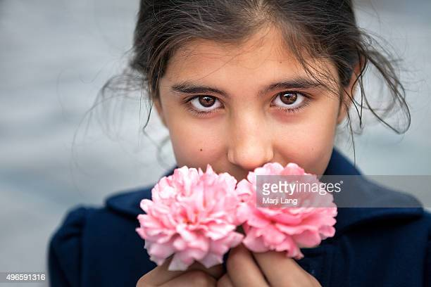 Lovely little girl smiling behind a pair of Damask roses in Konya Central Anatolia region Turkey