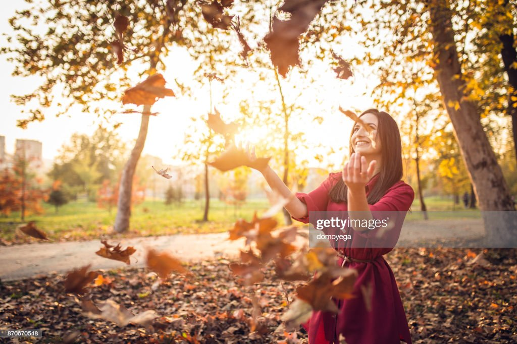 Lovely sunny autumn day in the public park : Stock Photo