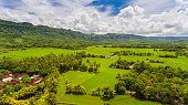 sukabumi rolling landscape extensive paddy rice