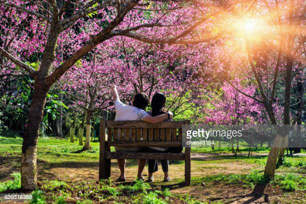 lover couple in love looking to the beautiful sakura - hanami stock pictures, royalty-free photos & images