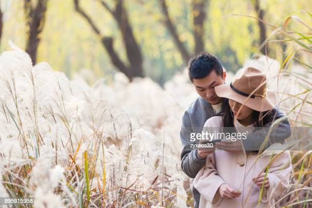 A lovers is in the natural environment,China - East Asia,