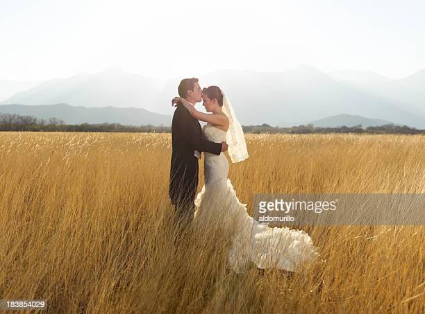 liebevoll braut und bräutigam - hochzeit fotos stock-fotos und bilder