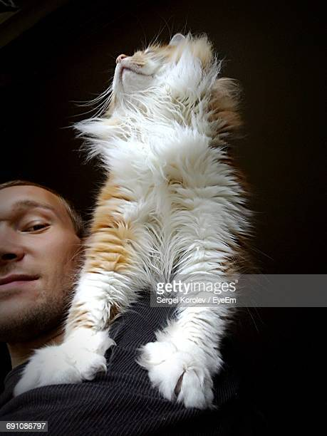 low angle portrait of man with cat against black background - hairy women stock pictures, royalty-free photos & images