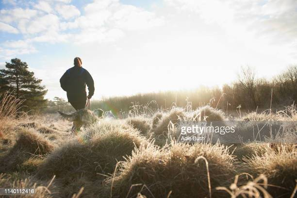 low angle rear view of mature woman walking dog on grassland - winter stock pictures, royalty-free photos & images