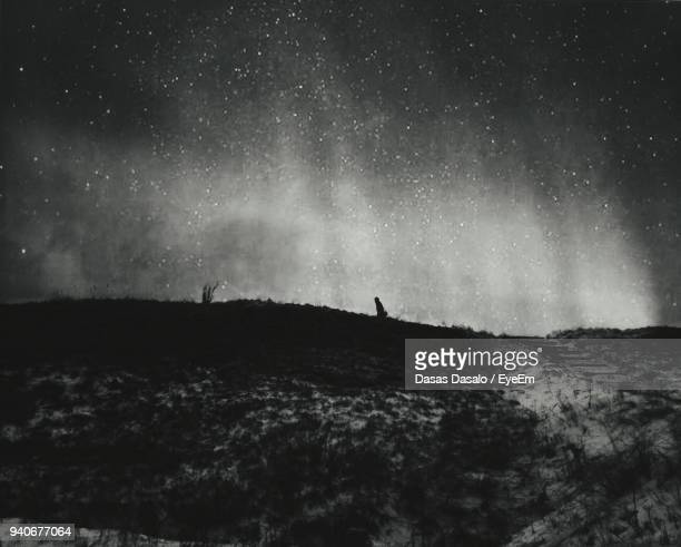 low angle scenic view of star field over landscape - 背景に人 ストックフォトと画像