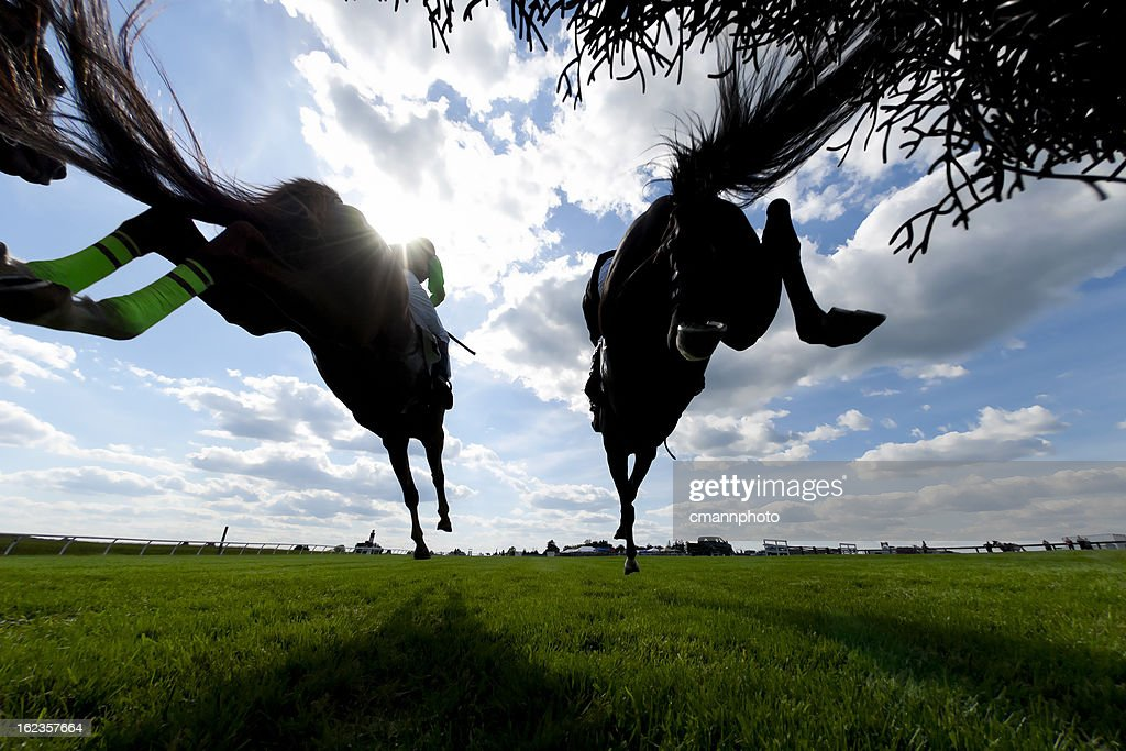 Low angle view Horse Racing Steeplechase jumping : Stock Photo