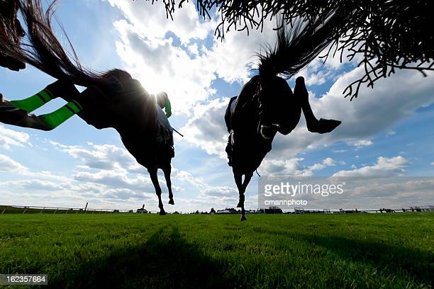low angle view horse racing steeplechase jumping - horse racing stock pictures, royalty-free photos & images