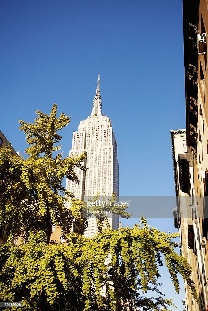 Low angle view of a building, Empire State Building, Manhattan, New York City, New York State, USA : Foto de stock