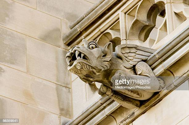 Low angle view of a dragon gargoyle, National Cathedral, Washington DC, USA