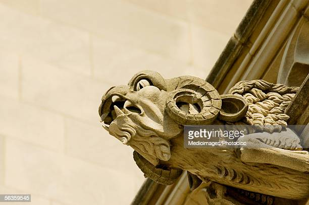 Low angle view of a ram gargoyle, National Cathedral, Washington DC, USA