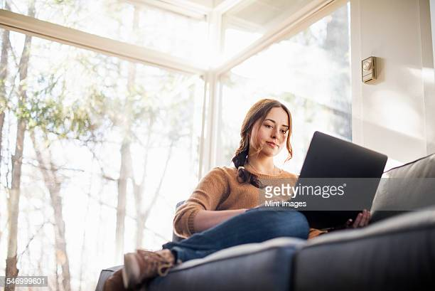 low angle view of a woman sitting on a sofa looking at her laptop. - 若い女性だけ ストックフォトと画像