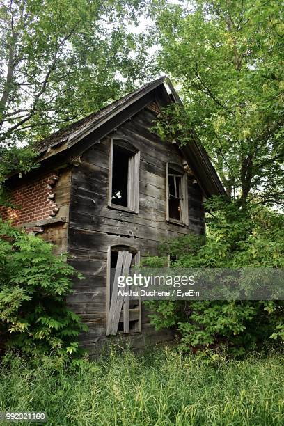 low angle view of abandoned house in forest - duchene stock photos and pictures