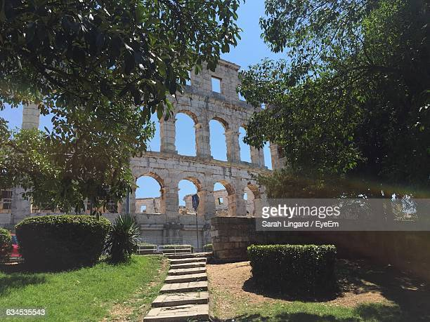 low angle view of amphitheater and trees on sunny day - lingard stock photos and pictures