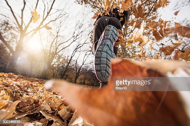 Low angle view of an athlete jogging on autumn leaves.