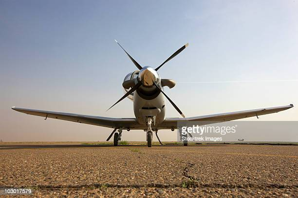 Low angle view of an Iraqi Air Force T-6 Texan trainer aircraft.