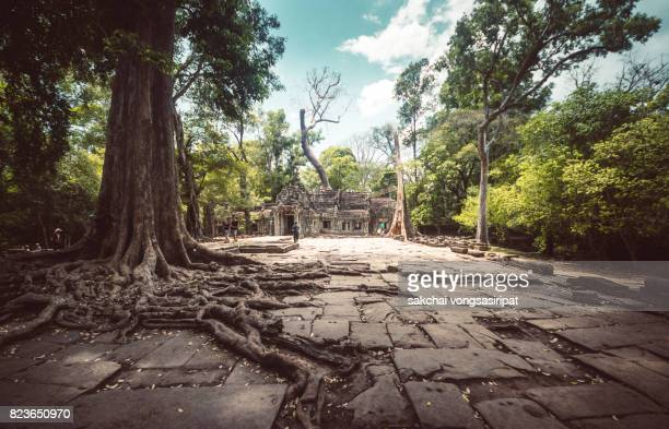 Low Angle View Of Angkor Wat Cambodia.Ta Prohm Khmer Temple