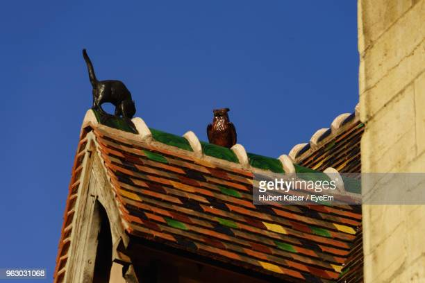 low angle view of animal sculptures on roof against clear blue sky - côte d'or bildbanksfoton och bilder